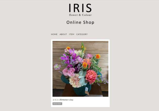 IRIS flower & colour